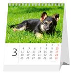 Asztali naptár Mini Kutyák,